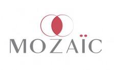 Logo mozaic basse définition